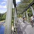 Cyclists on the Hauraki Rail Trail