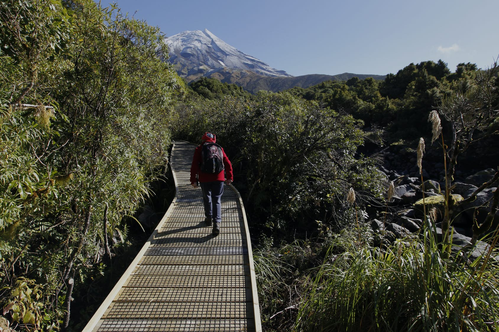 New Zealand's most scenic day hikes
