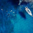 Aerial of a group of people swimming in blue water near a sailing boat in Barbados.