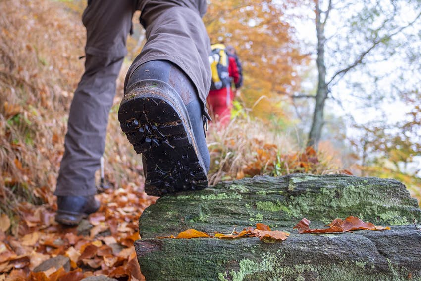 Closeup of a hiking boot walking up a trail scattered with bright orange leaves