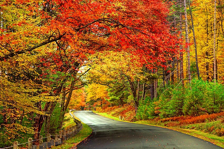The Ultimate New England Fall Foliage Road Trip Lonely Planet