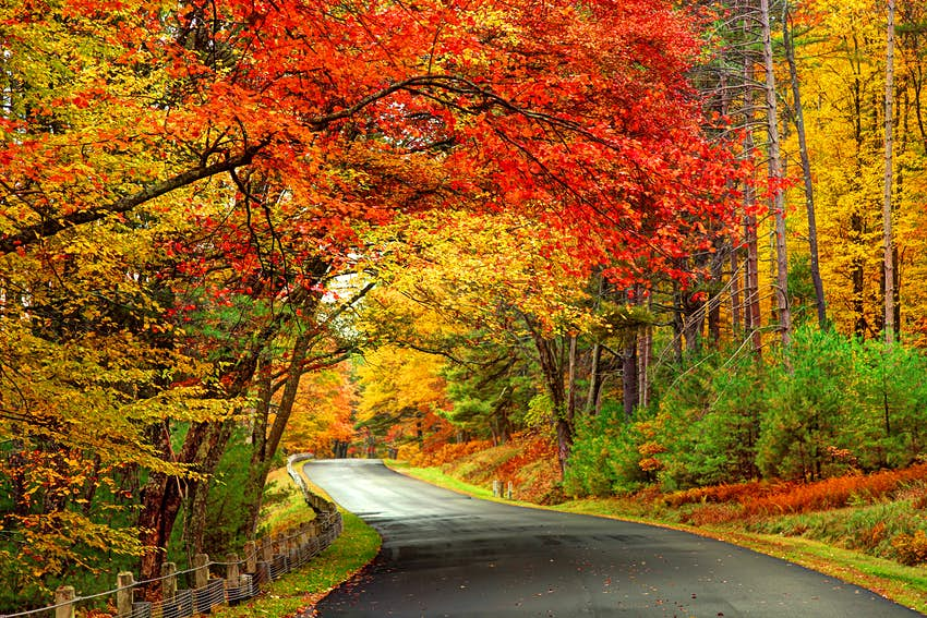 Scenic Autumn Road in the Quabbin Reservoir Park area of Massachusetts