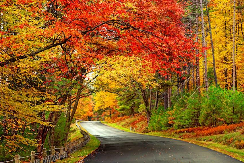 Scenic autumn road in Massachusetts, New England