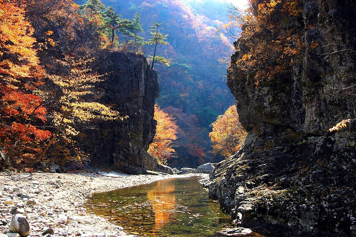Exploring the natural treasures of South Korea's Gyeongbuk region