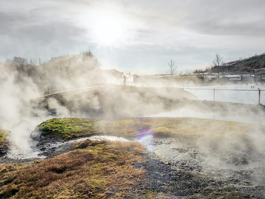 Steam rising from a grassy area near to a thermal pool