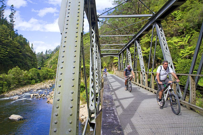 Cyclists on the Hauraki Rail Trail