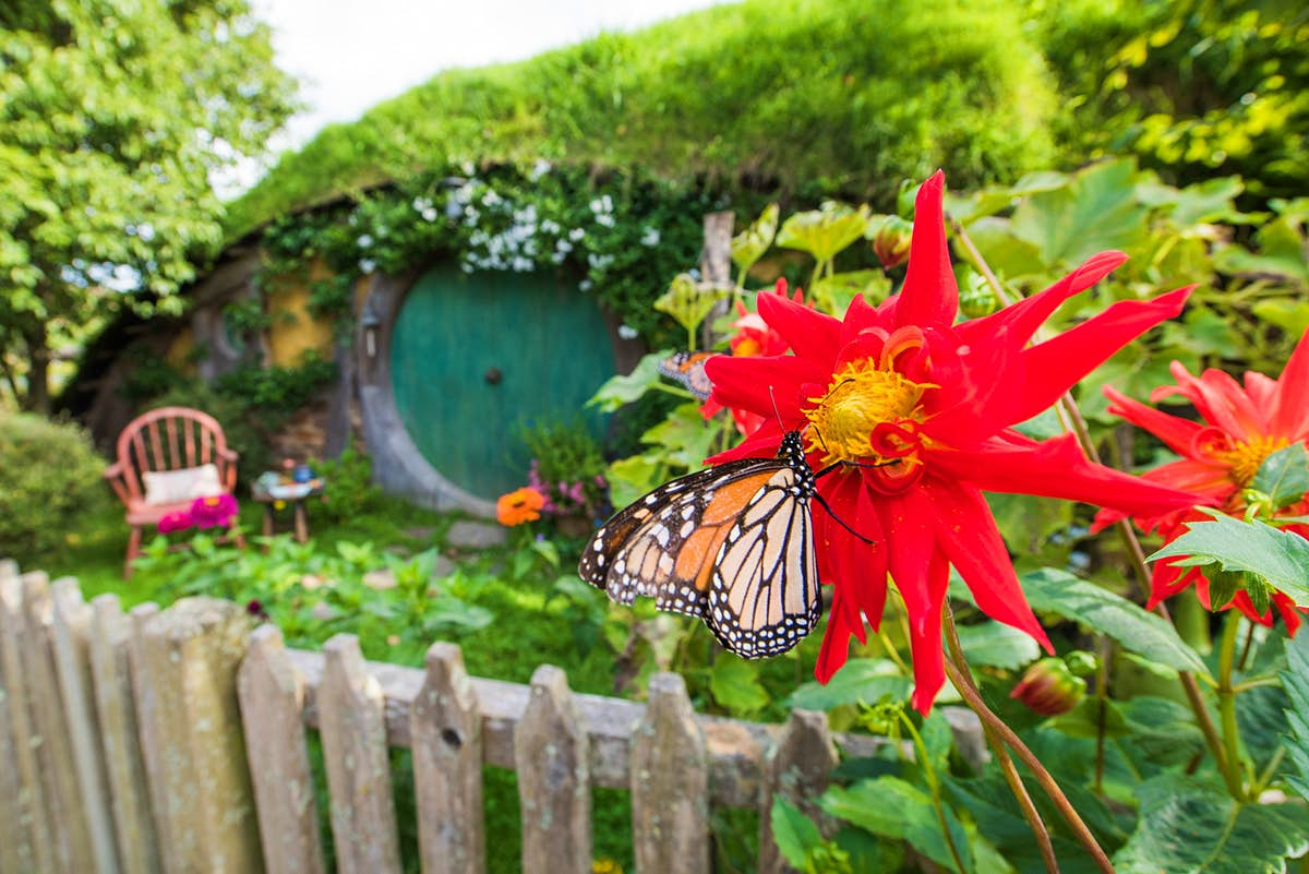 Hobbiton has been named one of New Zealand's best butterfly sanctuaries