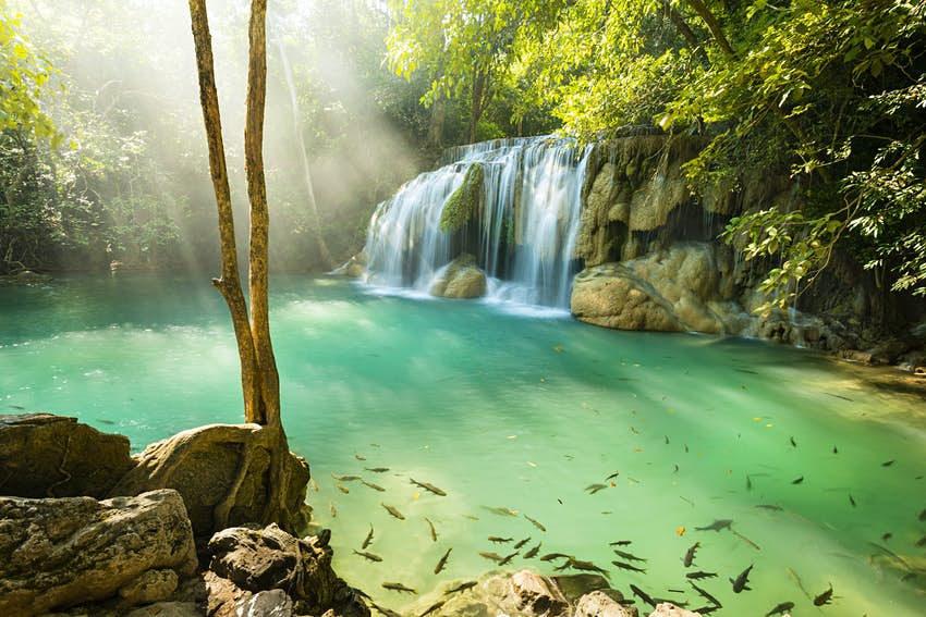 Fish swim in the aqua pool of a waterfall in the Erawan National Park.