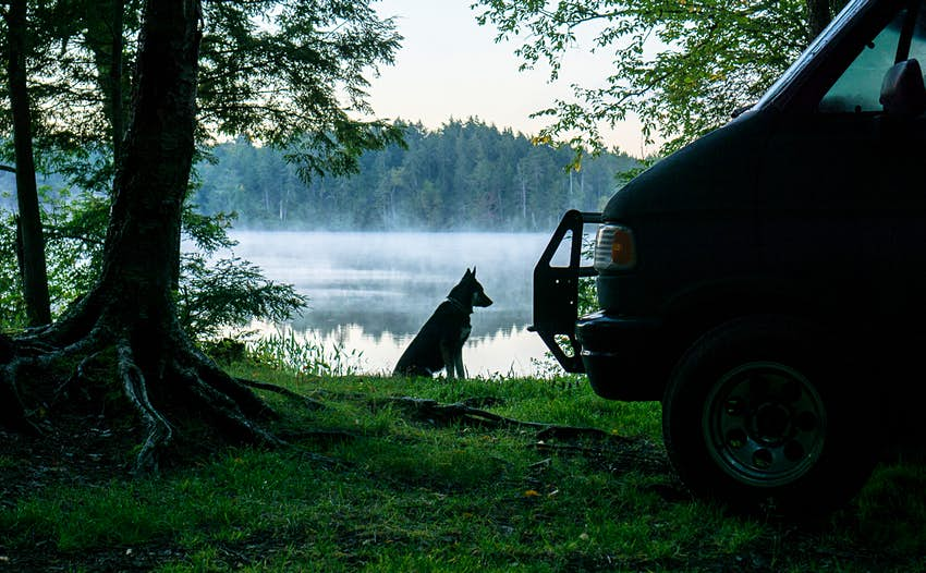 A dog sits near a lake in New York next to a camper van