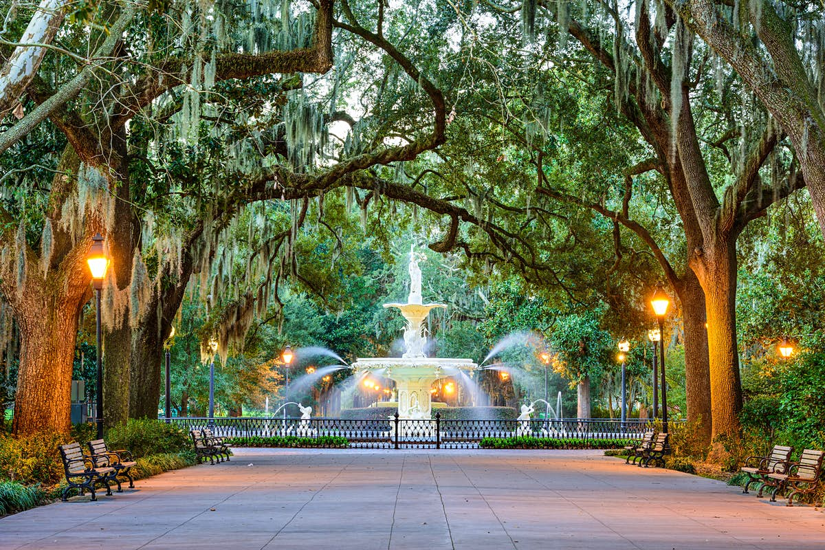 When to visit Savannah