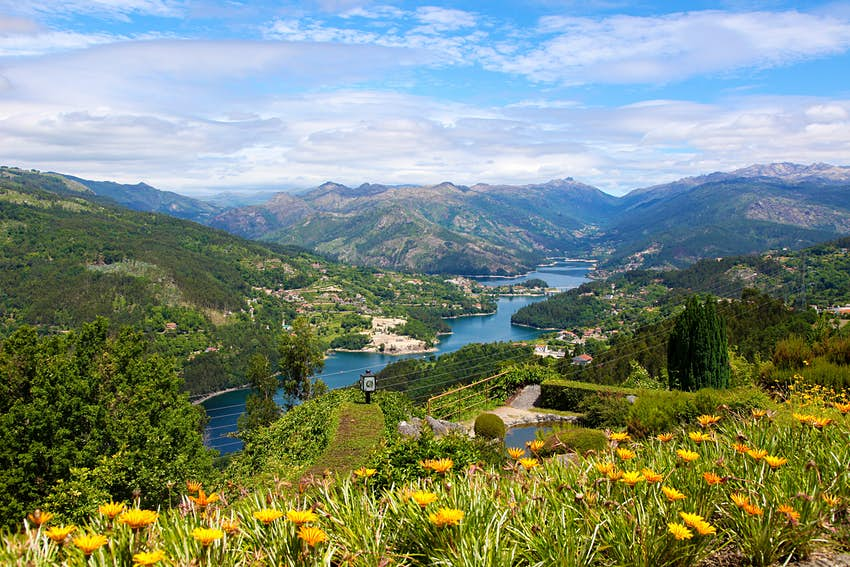 A view from a hilltop in Peneda Geres National Park, Portugal. In the foreground, a number of wildflowers blanket the hill, while in the background, far below, a large lake or river curves between grassy hills.