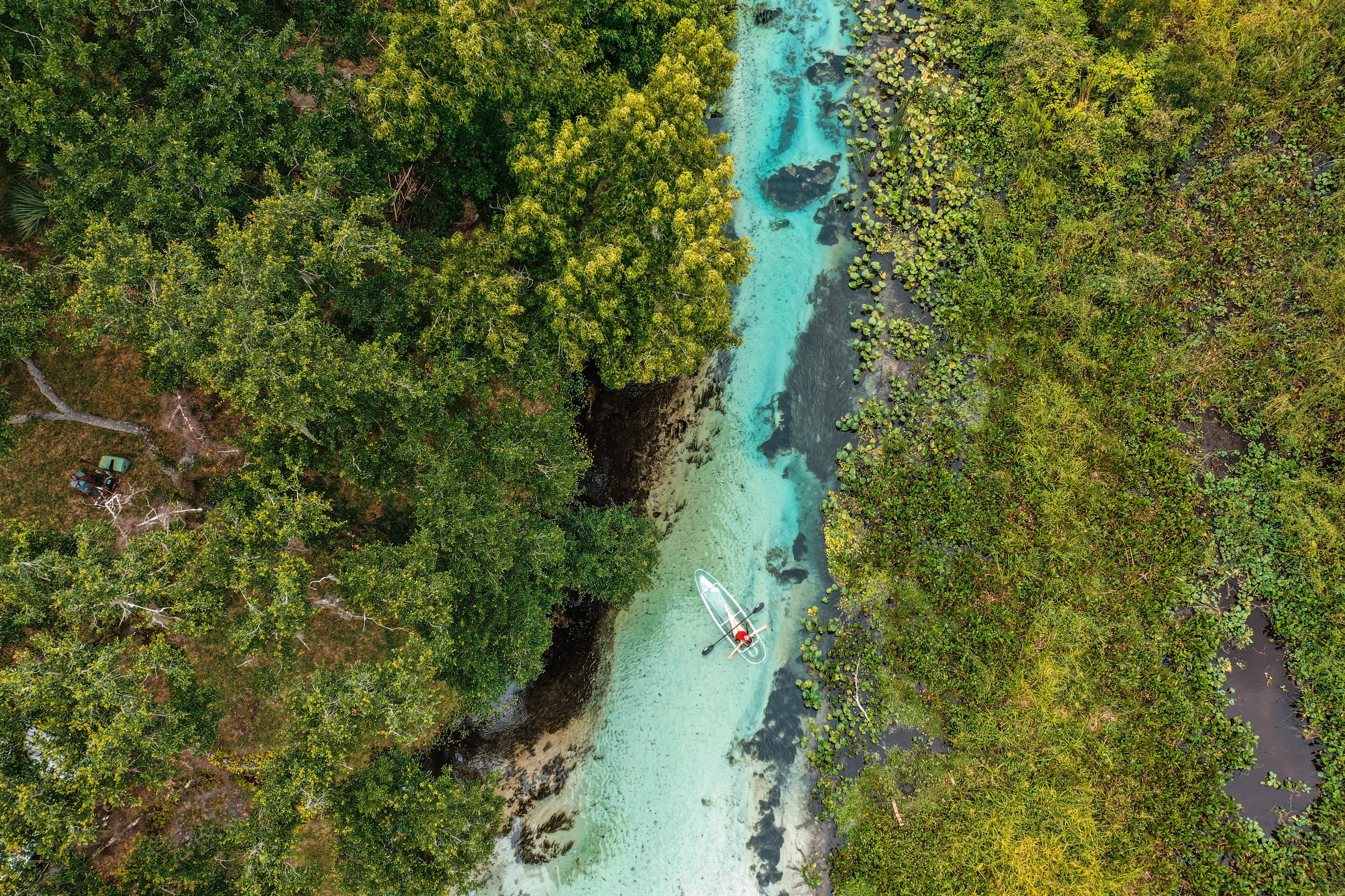 Florida S 7 Best Natural Springs For Year Round Adventure Lonely Planet