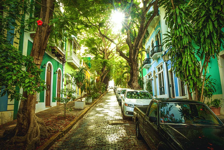 Cobblestone street full of trees and colourful buildings in old San Juan