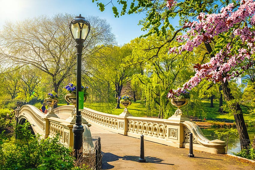 Bow bridge in Central Park in New York City on a sunny day,