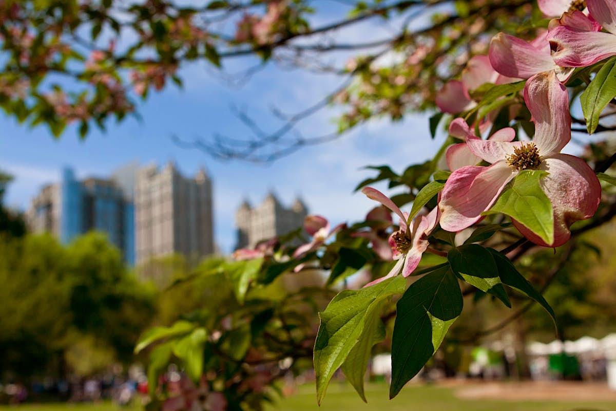 The 5 best parks in Atlanta