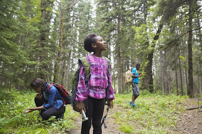 Siblings exploring in forest