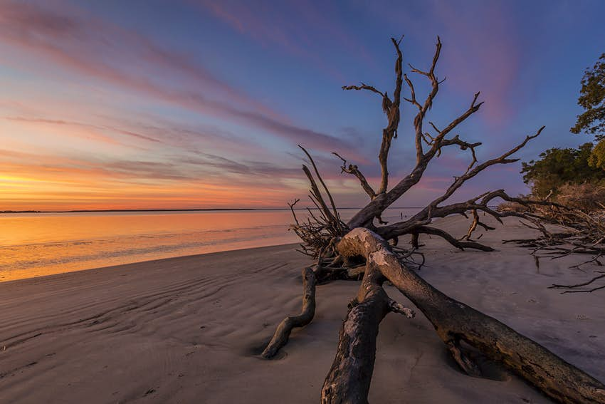 Dawn on Driftwood Beach - Jekyll Island