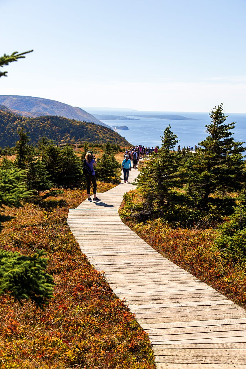 Hikers on a boardwalk through a hilly coastal area