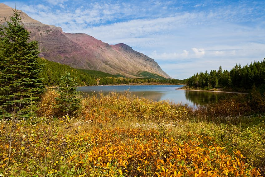 Fall Colors at Redrock Lake in the Swiftcurrent area of Glacier National Park