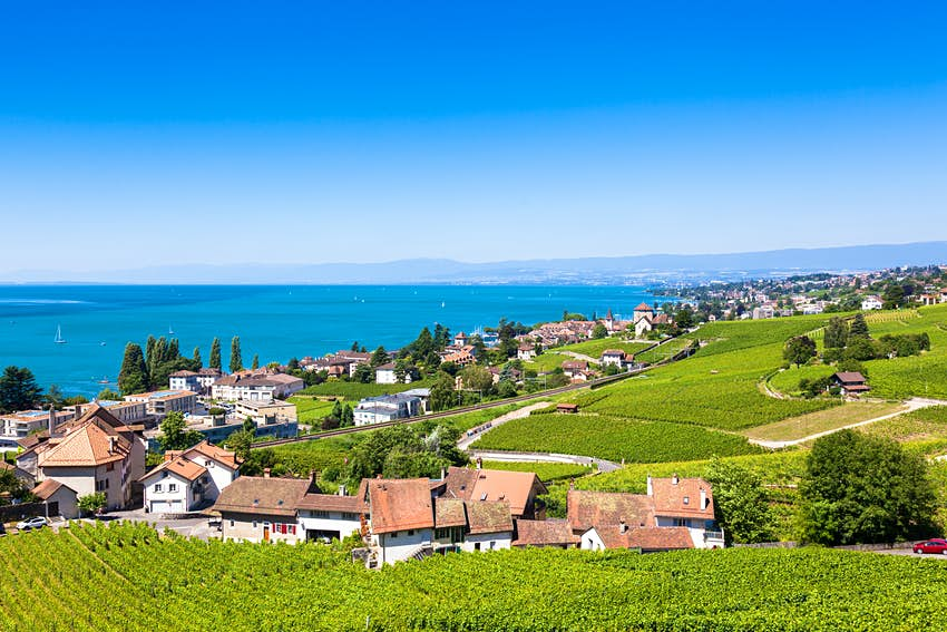 Vineyards in the Lavaux-Oron District with Lake Geneva beyond.