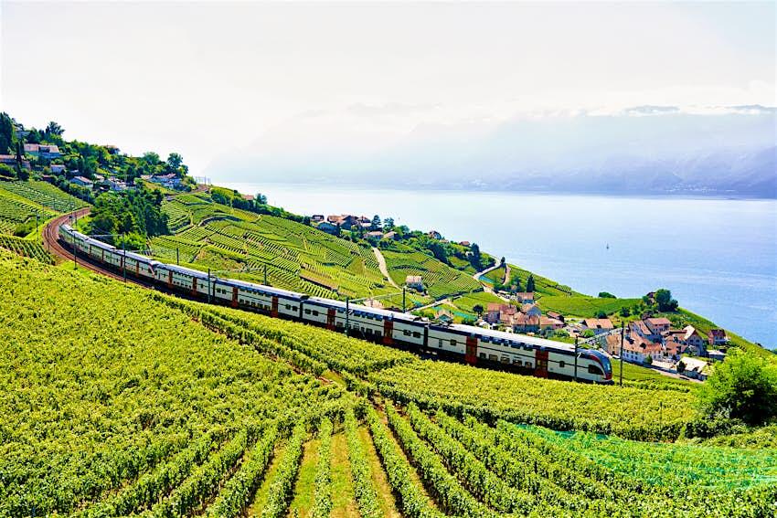 Train travelling through vineyards, as seen from the Lavaux Vineyard Terraces hiking trail near Lake Geneva