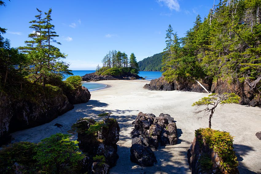 Beautiful panoramic view of sandy beach on Pacific Ocean Coast. Taken in San Josef Bay, Cape Scott Provincial Park, Northern Vancouver Island, BC, Canada.; Shutterstock ID 1194463075; Your name (First / Last): Alex Howard; GL account no.: 65050; Netsuite department name: Digital Content; Full Product or Project name including edition: Best beaches in Canada