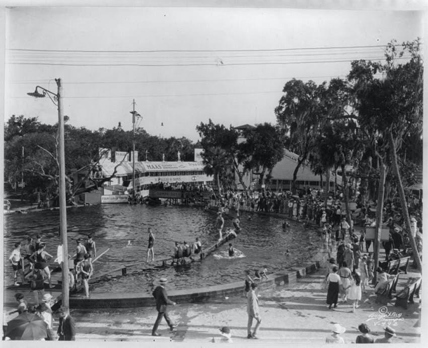 Swimming pool at) Sulphur Springs, Tampa, Fla