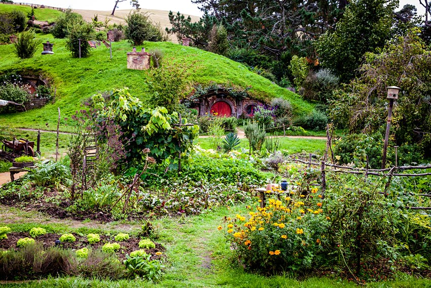 A small hobbit house is built into a green hill in Hobbiton in Matamata, New Zealand