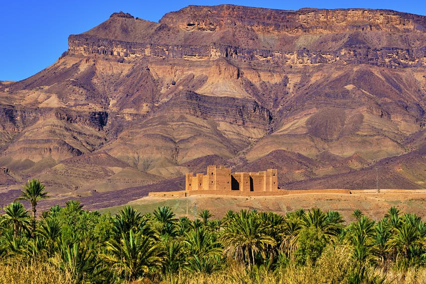Kasbah Tamnougalt in the Draa Valley, Morocco