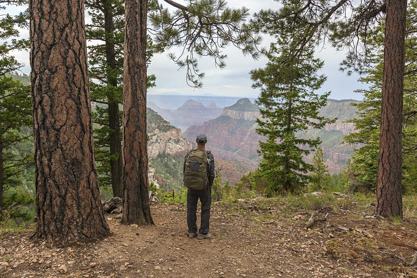 Man hiking trail in Grand Canyon