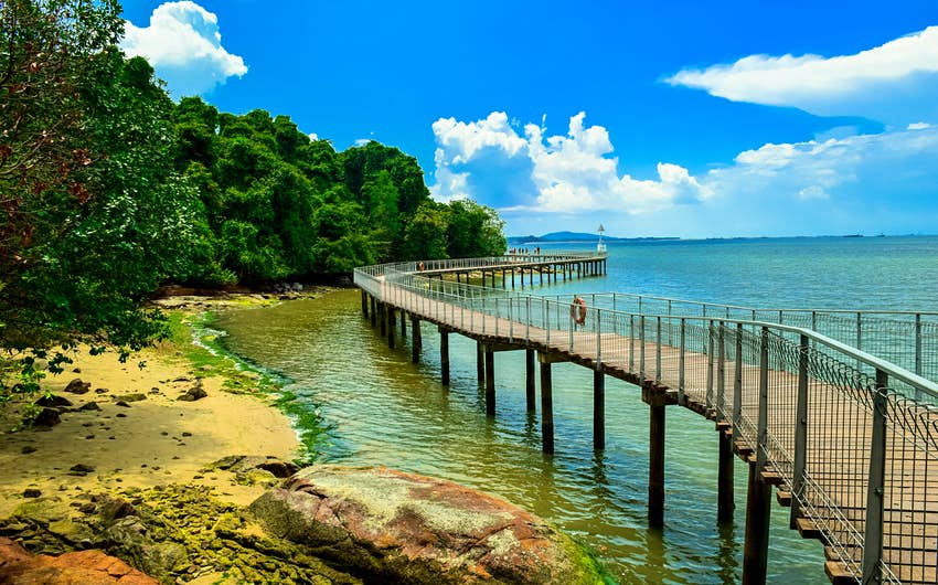 a photo of boardwalk along the Pulau Ubin island
