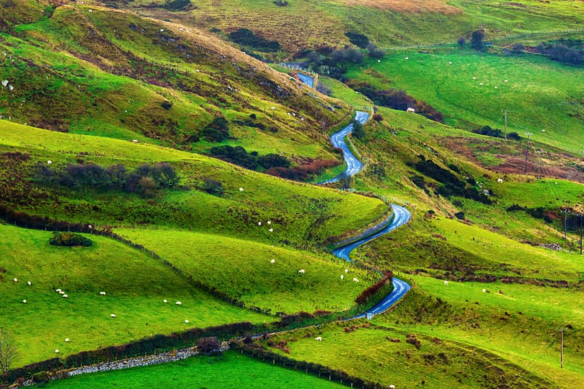Winding road through the lush green Irish landscape.