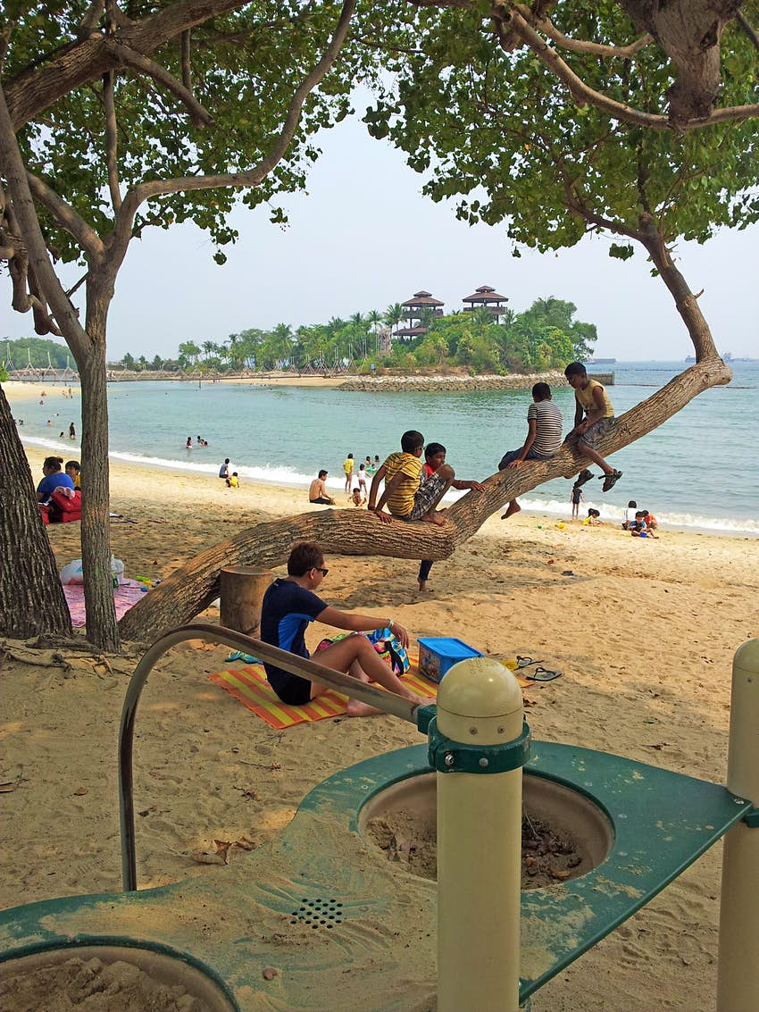 Children sit on a tree branch on Palawan beach with Palawan Island in the background