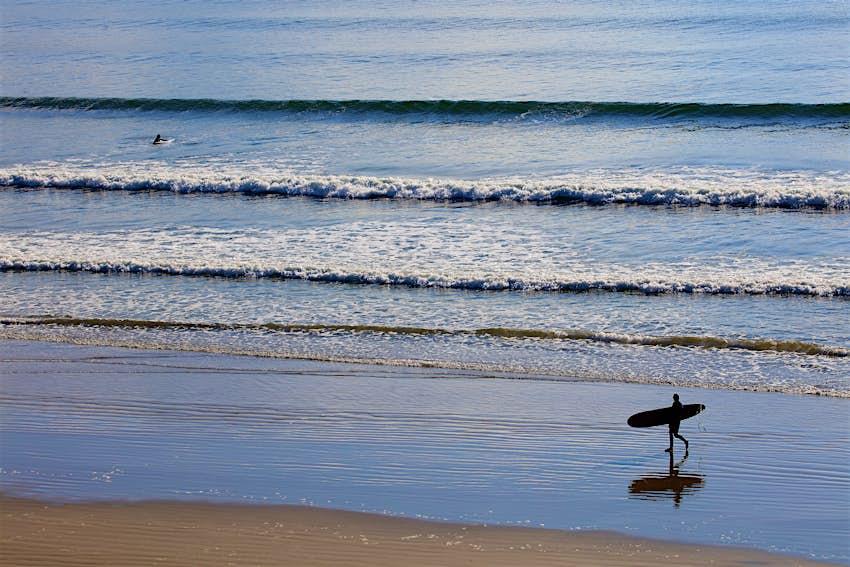 Surfer walking Inch Strand, Dingle Peninsula, Co Kerry_master.jpg