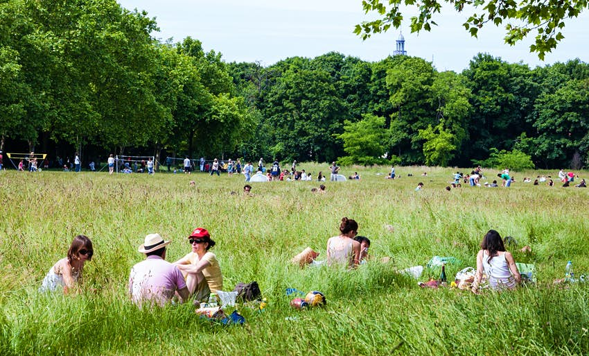 People sit on the grass in front of the forest.