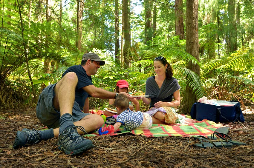 Family having an outdoor picnic at the Redwoods forest in Rotorua.