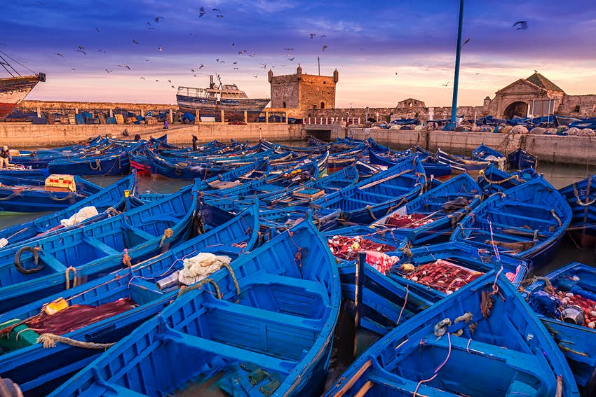 Boats in Essaouira port in Morocco