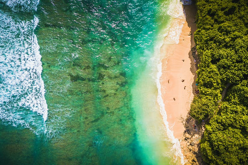 An aerial shot of green bowl beach - the sea is green and the sand is surrounded on all sides by greenery.