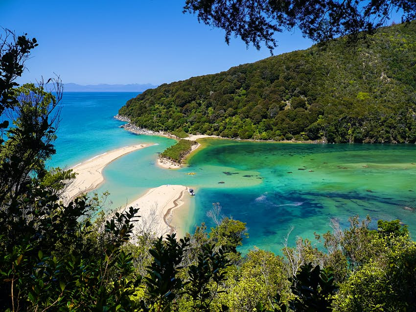 Bright blue water in a lagoon at Abel Tasman National Park in New Zealand