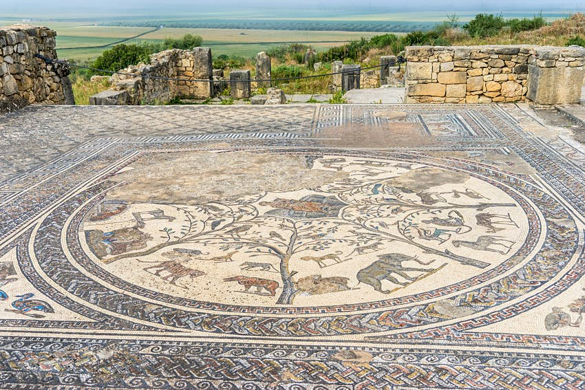 Mosaic floor in the Volubilis ruins, Morocco
