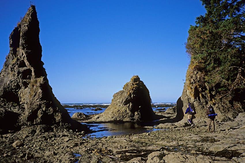 Hikers on Olympic Coast near Wedding Rocks Cape Alava and Lake Ozette trail, Olympic National Park, Washington