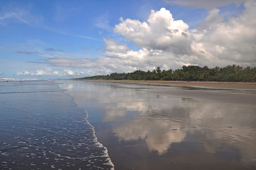 A wide angled view of a long empty stretch of beach with nobody on it. The beach is backed by forest and the sand seems to stretch for miles.