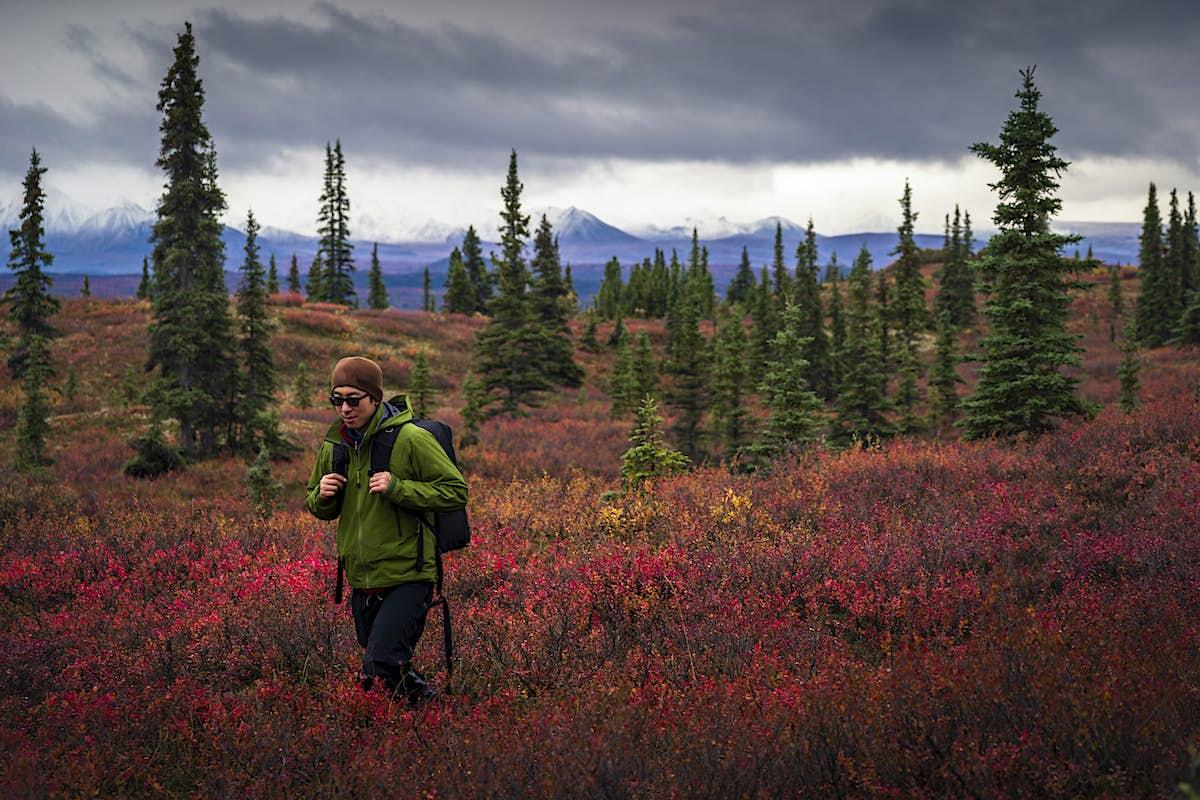 Top 14 best hikes in Alaska