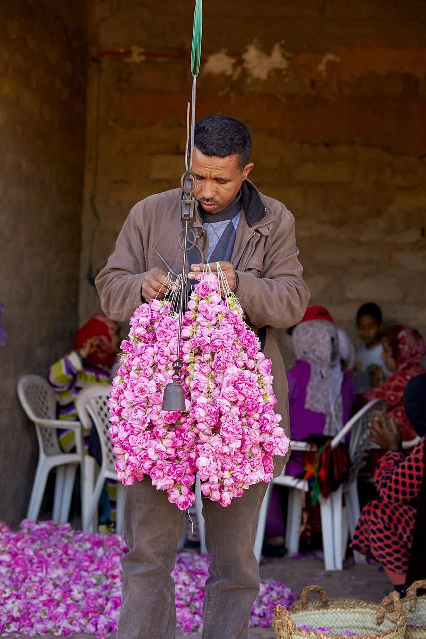Rose garlands sewn by Amazigh women from the village of H'dida, being weighed for sale