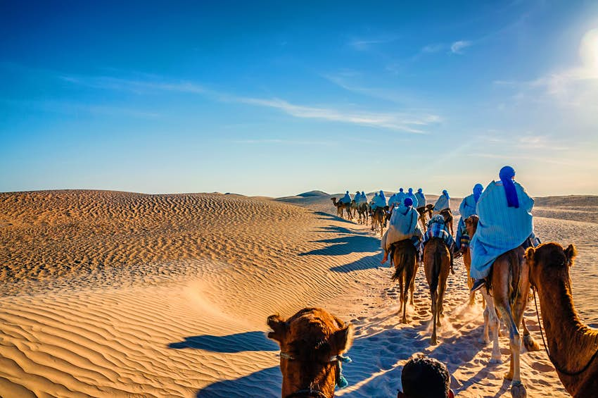 A caravan of camels walking through the sands of the Sahara Desert, Morocco