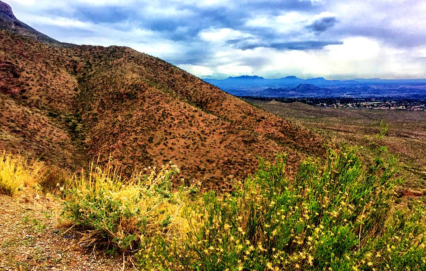 A horizontal view of the Franklin Mountains in El Paso, Texas, includes yellow wild flowers. Some of El Paso is visible in the background.
