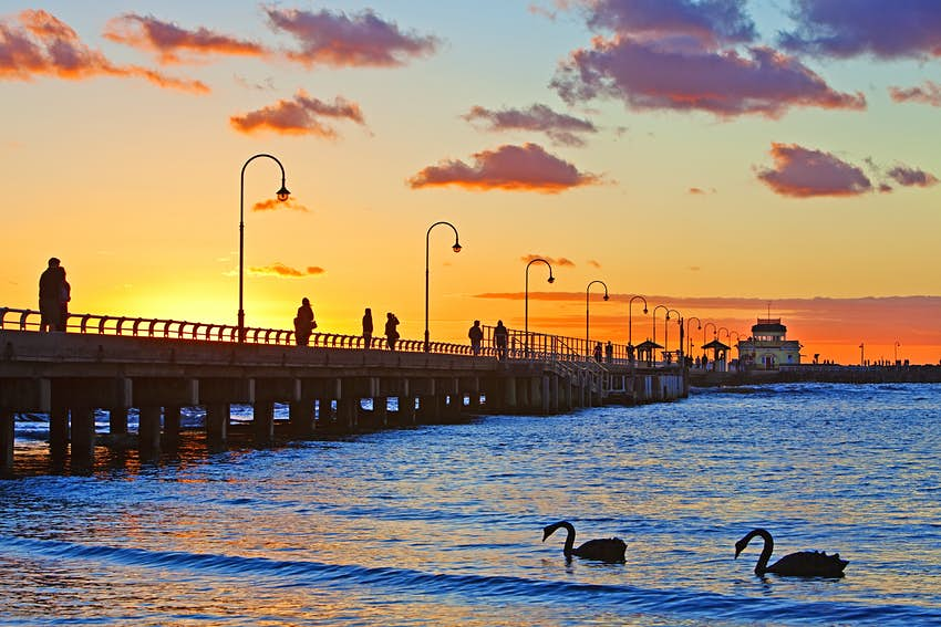 Sunset, at St. Kilda Pier, with swans in Melbourne