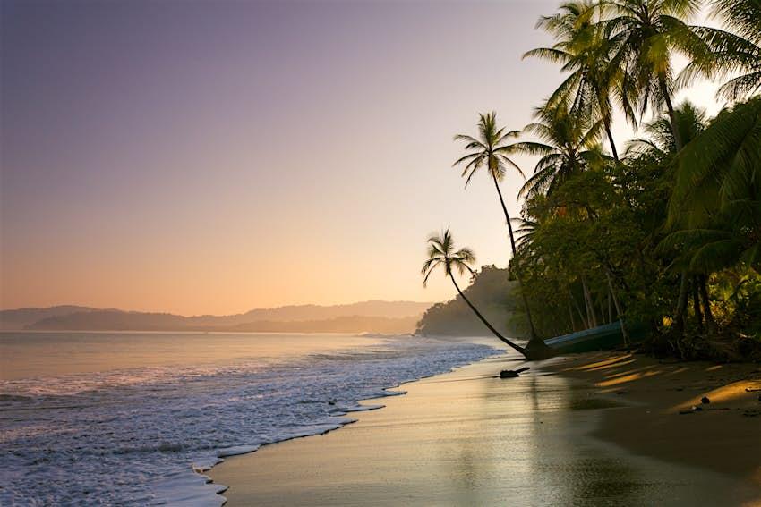 Sunset on palm fringed beach at Drake Bay, Costa Rica