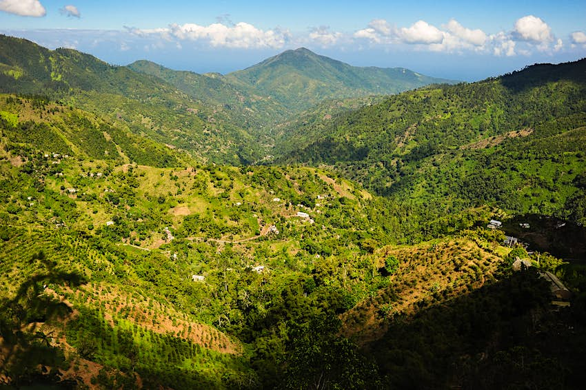 A view of coffee plantations sprawling across the rugged Blue Mountains of Jamaica at sunset.