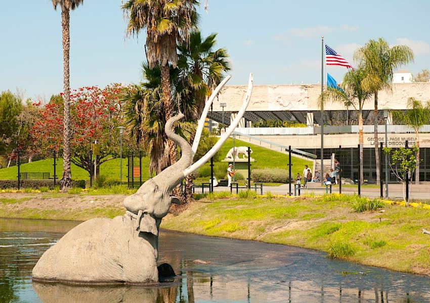 A mammoth sculpture in La Brea Tar Pits in Los Angeles